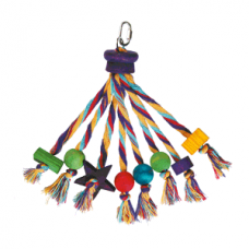 Happy pet parrot toy carnival
